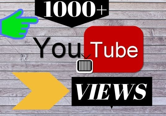 I will provide 1000+ YouTube views with engagement