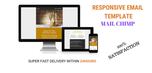 I will design an HTML email, email template, or newsletter