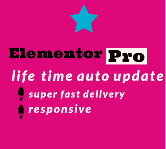 I will Create A Landing Page or Full website Using Elementor Pro