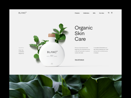 Design Your Stunning Squarespace Site