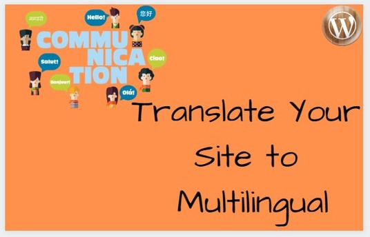 I will Translate Your Website To Multilingual