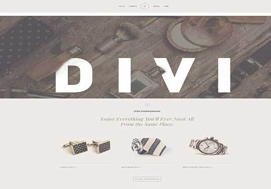I will design responsive wordpress website  by divi theme