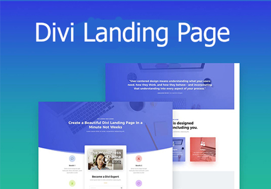 I will make landing page using divi builder