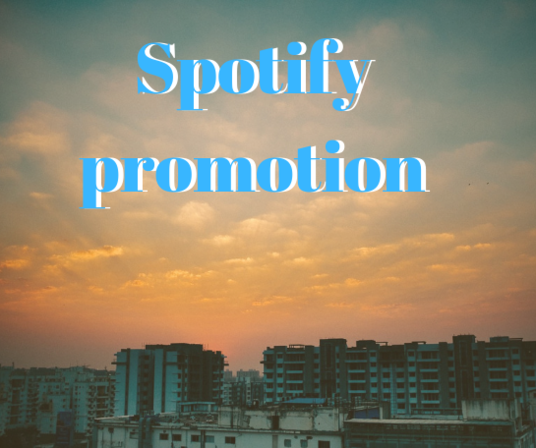 I will Provide 2000+ Spotify Plays