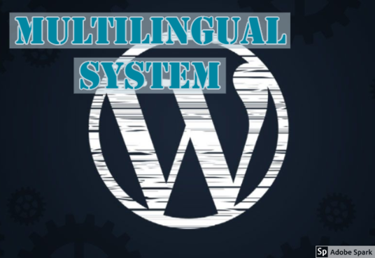 I will Add Multilingual System Perfectly In Your Website Within 24 Hours