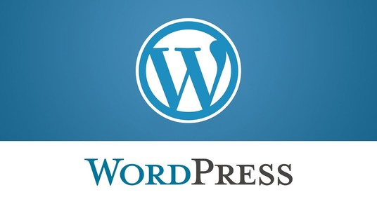 I will install your WordPress Theme and Plug In and Add Menus