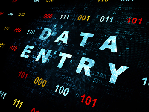do any kind of data entry for your business