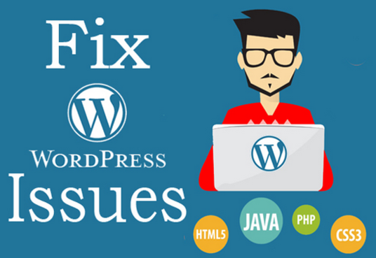 I will fix your Wordpress any issues / Errors