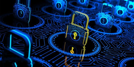 provide  basic cyber security services with 100% guarantee