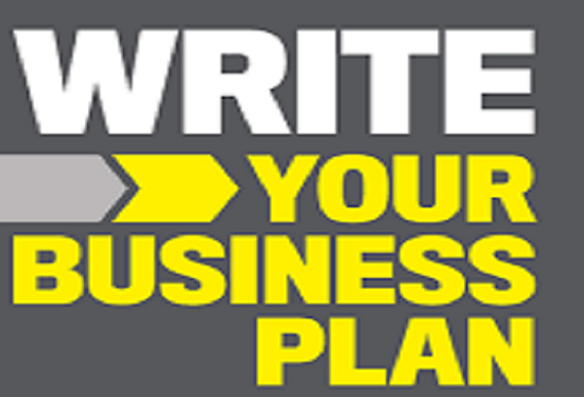 I will write an Investor Business Plan