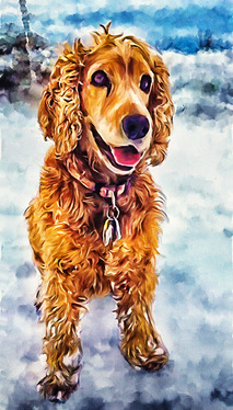 Draw A Pet Portrait In Oil Painting Style
