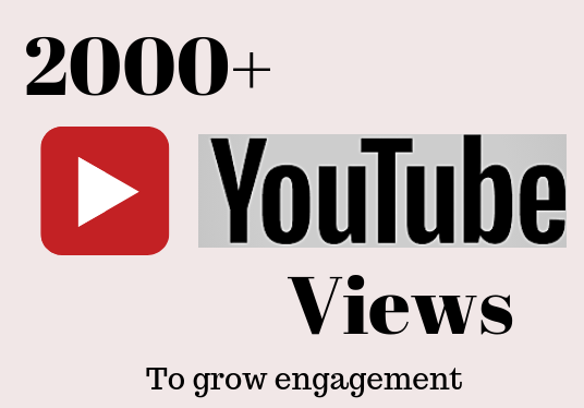 I will provide 2000+ quality youtube views