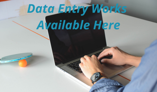 I will do any kind of data entry jobs for your business