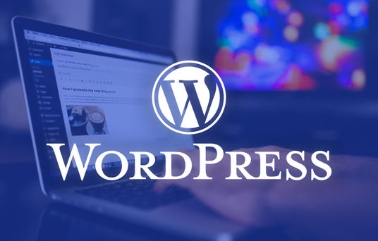 I will install and design a WordPress website