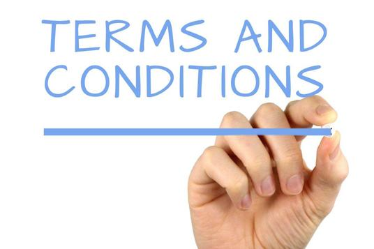 draft terms and conditions or privacy policy for your business or website within 24 hours