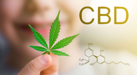 I will  send 1500 Cbd Traffic To Your Cbd Website