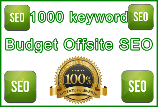I will Target 1,000 Keywords with Powerful Budget - Offsite Only SEO Setup  with Premium Software