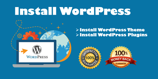 I will Install your WordPress Theme exactly like Demo