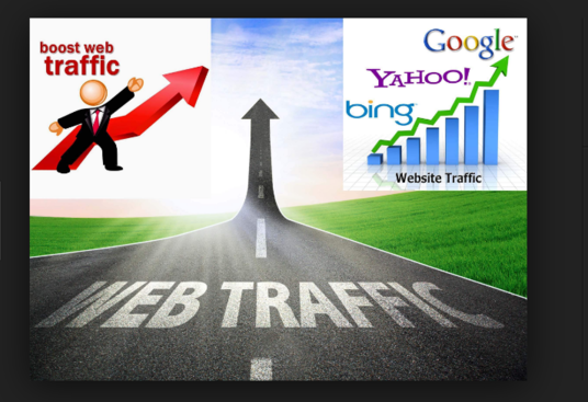 I will drive 10000 web traffic to your site