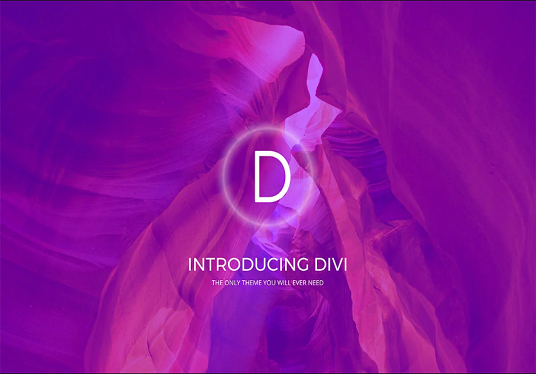I will Create Responsive Wordpress Website With Divi Theme