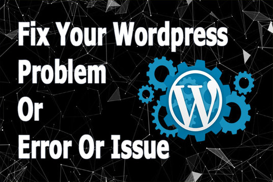 I will Fix Wordpress Problem, Error, Issue