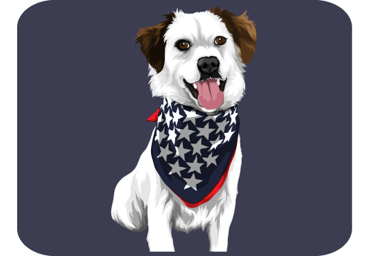 I will draw your pet into a awesome cartoon