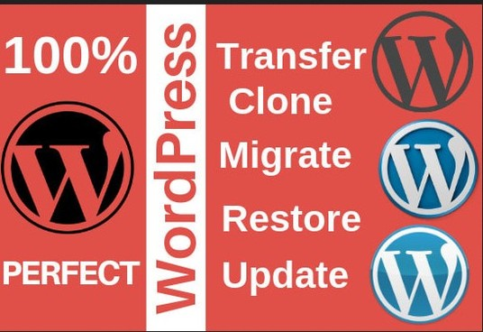 I will migrate, move or transfer your website
