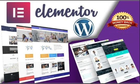 I will install elementor pro and design wordpress website using elementor pro page builder