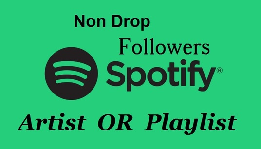 I will provide 2,000 Spotify Playlist or Artist followers , non drop