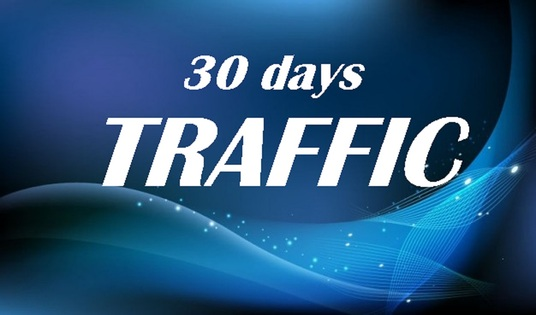 I will deliver 30 days of High quality real TRAFFIC to your Link, Shop, blog or website