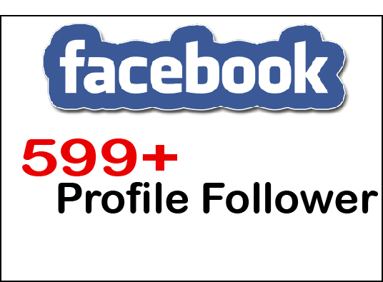 I will provide 599+  Facebook Profile Follower