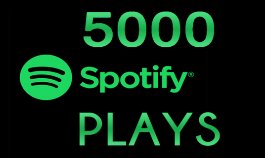 add 5000 spotify plays