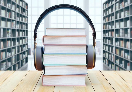do Professional audiobook Promotion or picture book promotion
