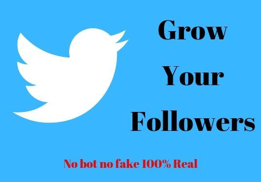 I will give 500 real Twitter followers