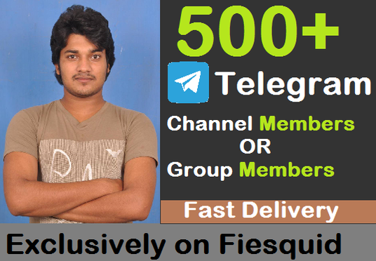 I will Add 500+ Real Telegram Channel Members or Group Members