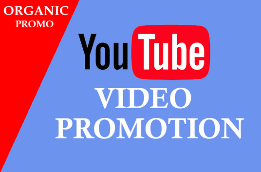 provide 1000+ real youtube views