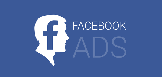 I will Run A Facebook Ad Campaign To Grow 1000 Page Likes