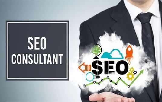 I will be your SEO Consultant