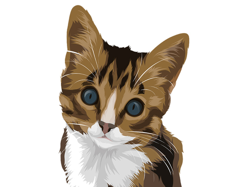 draw your beloved pets into cute cartoon