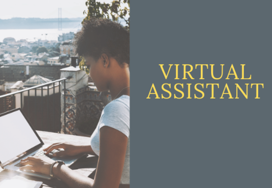I will be your Virtual Assistant