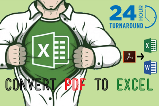 I will Convert Pdf To Excel up to 25 pages