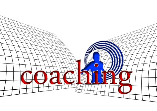 provide a 20 minute life coaching taster session
