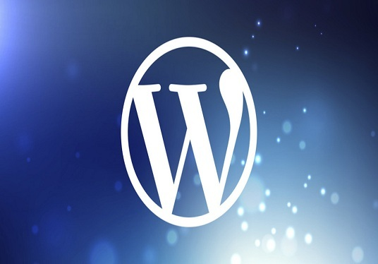 I will Do Wordpress Website Design & Customization