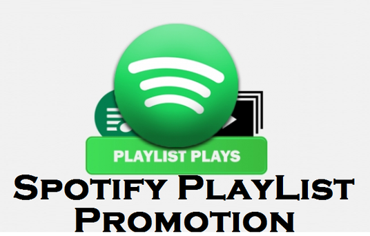 I will provide 5,000 Spotify USA playlist Plays, Non Drop