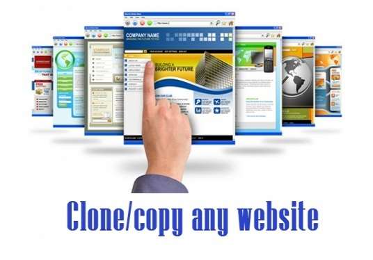 I will clone or copy your sample website