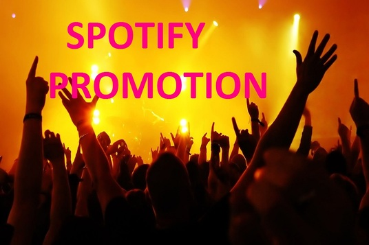 I will add 1000 Real People to your Spotify Followers