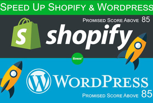 I will Speed Up   and Optimize WordPress  Website Professionally
