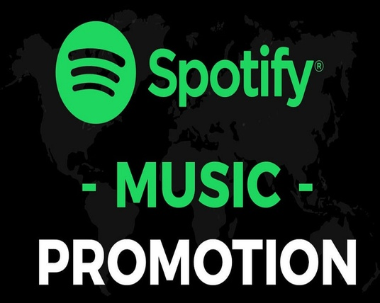 I will Provide You 1500 Spotify Followers - United States