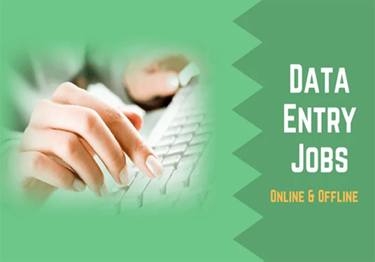 I will Data Entry, Data Analysis, Data Entry Jobs, Excel Jobs in 24 hours