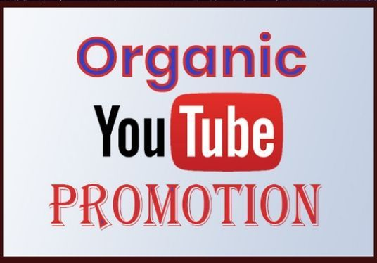 I will Do Fast Organic Youtube Promotion to get 2k audience